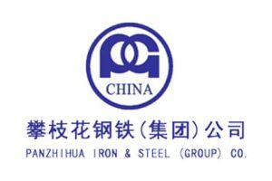 攀枝花钢铁(集团)公司